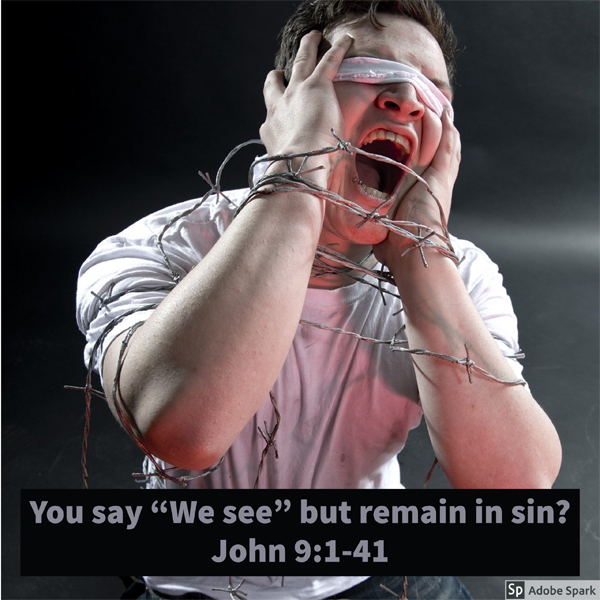 "You say ""We see"" but remain in sin?"